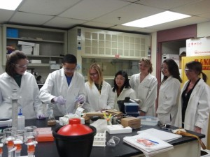 All students in the lab (sans Dr. T)